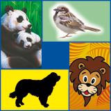 Realistische dieren
