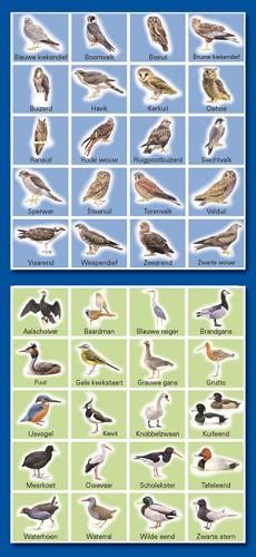 Serie 27 - weide- en roofvogels