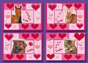 Serie 454 - love animals